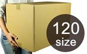 120cm以下size紙箱